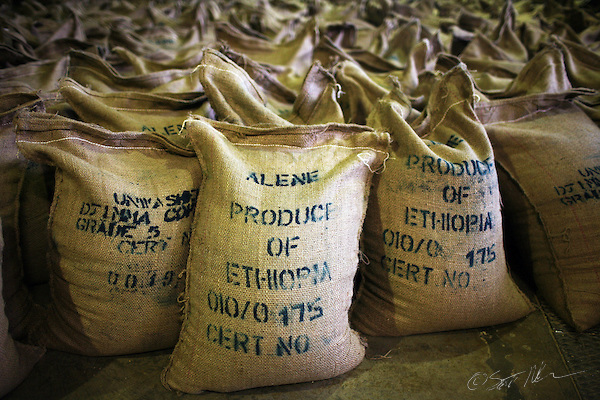 Ethiopia Moves to Trademark Local Coffees