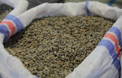 Single Origin Green Beans in Open Bag 400